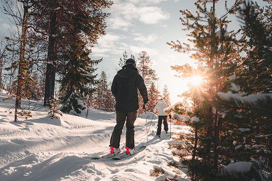 Photo show a mother and her small daughter skiing in a sunny forest.